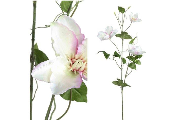 PTMD Garden Flower White Clematis Spray