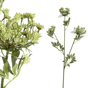 Garden Flower Green Queen Lace Spray