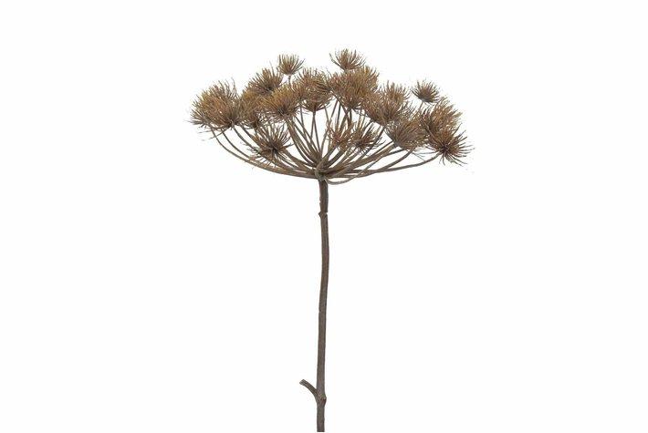 Brynxz Brynxz heracleum 2 teilig 128cm bruin
