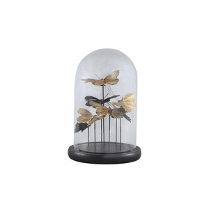 PTMD Cadence Black glass bell jar with butterflies