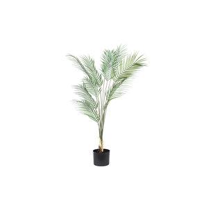 PMTD Tree Plant green palm leaves L