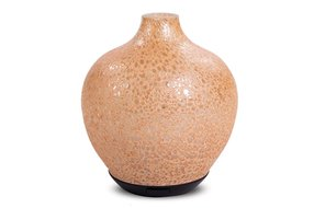 Home society Glass diffuser vase speck