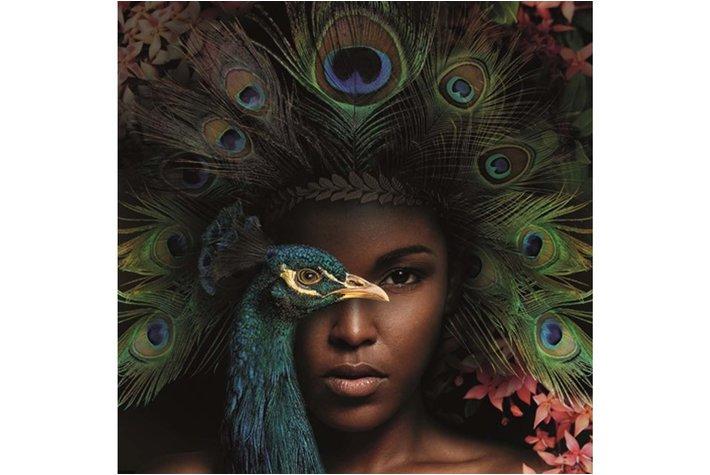 Eigenstijl Wonen Alu Art Royal Peacock 120 x120