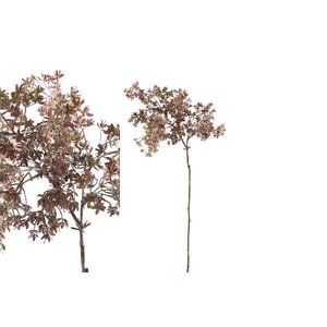 PTMD Twig Plant brown osmanthus spray