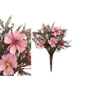 PTMD Garden Flower pink fall cosmos fern leaf bush