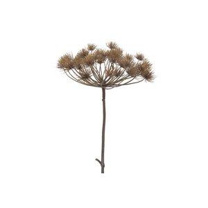 Brynxz heracleum 2 teilig 128 cm, donkerbruin