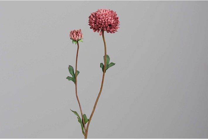 Brynxz chysanthemum, 63 cm, dark-pink