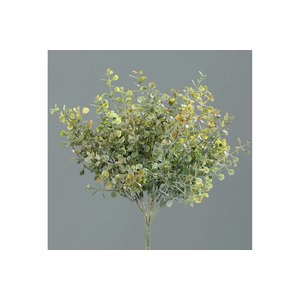 Brynxz mint-bush, 27 cm, autumn