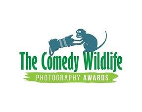 The Comedy Wildlife