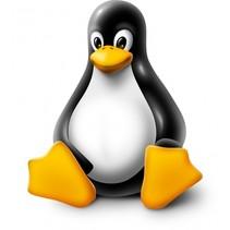 Tux Droid pinguïnrobot 21 cm Linux zwart/wit