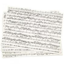 kraft papier muzieknoten zwart/wit 21 x 29,7 cm 10 stuks
