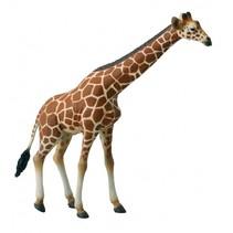 Wilde Dieren Giraf 15.5 x 16.5 cm