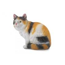 katten: huiskat 5 cm bruin/wit