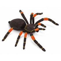 roodknievogelspin Mexico junior 19,5 cm zwart/oranje
