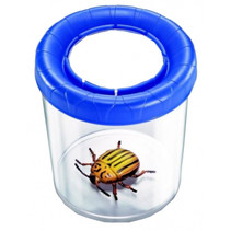 insectenpot junior 10 x 10 cm transparant/blauw