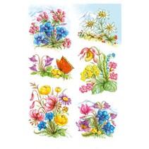 etiketten 6 stuks 16 x 9 cm bloemen