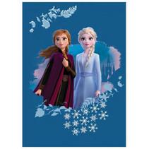 deken Frozen meisjes 100 x 140 cm fleece blauw