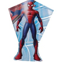 vlieger Spider-Man 80 x 56 cm