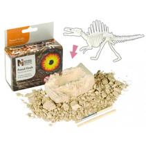 fossielen ontdekset stegosaurus junior 3-delig