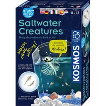 experimenteerset Saltwater Creatures junior