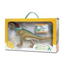 prehistorie: Tyrannosaurus Rex Deluxe Window Box 27 cm groen