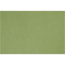 Frans karton groen A4 210 x 297 mm 160 gram