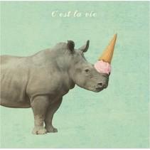 canvas schilderij 20 x 20 x 4 cm Rhinoceros