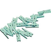 miniwasknijperset 2,5 cm hout mintgroen 20 stuks