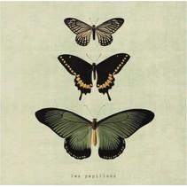 canvas schilderij 20 x 20 x 4 cm Butterflies