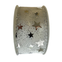 decoratielint ster unisex wit/zilver 2 meter