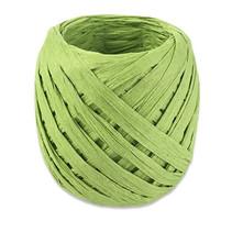 lint 20 meter papier groen