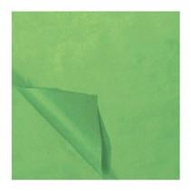zijdevloeipapier 25 vellen 50 x 70 cm lichtgroen