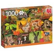 legpuzzel Herfst 1000 stukjes