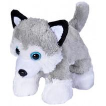 knuffel husky junior 18 cm pluche wit/grijs