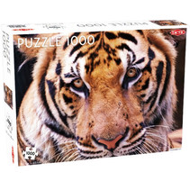 legpuzzel tijger portret 67 x 48 cm 1000 stukjes