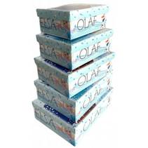 opbergdozen Frozen meisjes blauw/wit 5 stuks