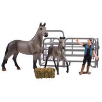Country Life paardenverzorging grijs 14 cm