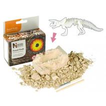 fossielen ontdekset triceratops junior 3-delig
