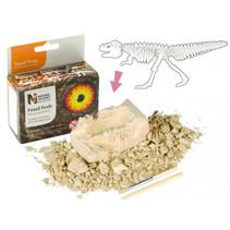 fossielen-ontdekset T-Rex junior bruin