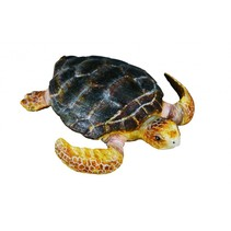 Zeedieren Schildpad 7 X 1 cm