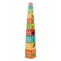 stapelblokken Preschool Boerderij junior karton 10-delig