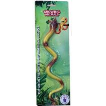 groei dier slang 34 x 11 cm
