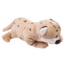 knuffelpoema Wild Pups 26 cm pluche bruin