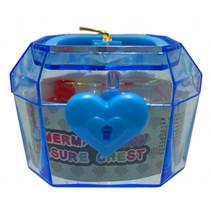 schatkist met parels meisjes 6 x 4,5 cm blauw