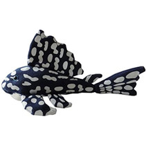 knuffelvis Sapphire junior 30 x 18 cm pluche blauw