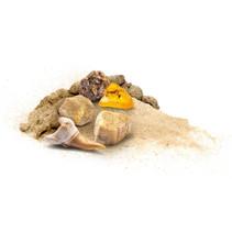 opgravingsspel Dig Out Fossils junior 13 x 21 cm 5-delig