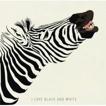 canvas schilderij 20 x 20 x 4 cm Zebra