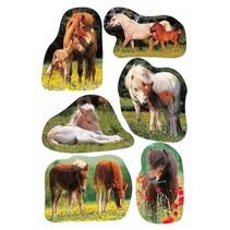 etiketten paarden junior 3 vellen