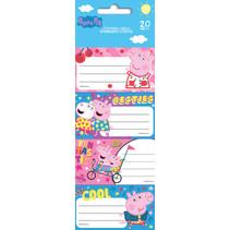 etiketten junior papier roze/blauw 20 stuks