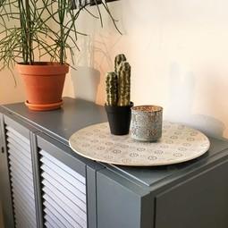 HV Cactus in pot +/_ 25cm